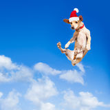 Santa Claus doskakiwania pies Obraz Stock