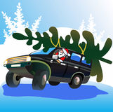 Santa Claus drives Christmas tree. Royalty Free Stock Photo
