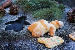 Santa Claus e biscoito cozidos Imagem de Stock