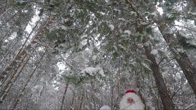Santa Claus e nipote che ondeggiano le loro mani in un'abetaia nevosa archivi video