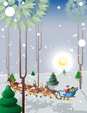 Santa Claus in forest. Santa Claus flies reindeer in the light of the moon low over the ground Royalty Free Illustration