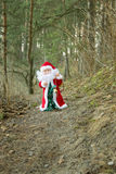 Santa Claus in the forest Stock Photos