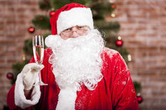 Santa Claus with a glass. Of sparkling wine champagne near a Christmas tree Royalty Free Stock Image