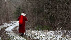 Santa Claus going down the road in the woods