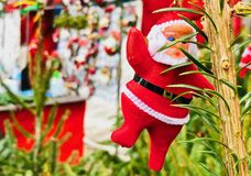 Santa Claus hanging at the tree royalty free stock photo