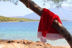 Santa claus hat hanging on tree Stock Image