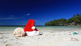 Santa Claus hat and seashell on caribbean beach stock video