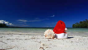 Santa Claus hat and seashell on caribbean beach stock video footage