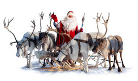 Santa Claus and his deer. Santa Claus are near his deer in harness on the white background. He welcomes you and is waving his hand Stock Image