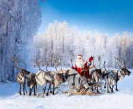 Santa Claus and his reindeer in forest Royalty Free Stock Photo