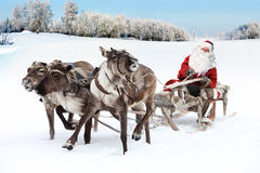 Santa Claus and his reindeer in forest. Claus riding in sleigh and driving his harness of reindeer in the fairy winter forest Royalty Free Stock Image