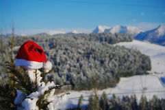 Santa Claus-hoed Stock Foto
