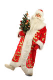Santa Claus holding  christmas tree Royalty Free Stock Images