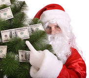 Santa Claus holding pine with money. Royalty Free Stock Image