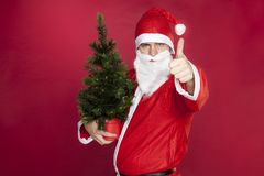 Santa Claus holds a Christmas tree and shows thumbs up. On the red background stock photos
