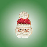 Santa Claus homemade gingerbread cookies. Gingerbread cookies on the green background Stock Photography