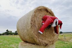 Santa Claus i höet Royaltyfria Bilder