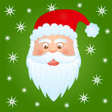 Santa claus. Image of funny santa claus on green background Royalty Free Stock Photos