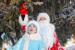 Santa Claus med ett långt skägg Royaltyfria Foton