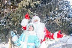 Santa Claus med ett långt skägg Royaltyfria Bilder
