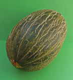 Santa Claus Melon Royalty Free Stock Photography