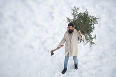 Santa Claus mit Axt im Winter Bärtiger Mann mit frisch verringertem Weihnachtsbaum in der Waldwinterzeitszene stockfotos