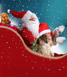 Santa Claus with the monkey. Sitting in his sleigh Stock Photos