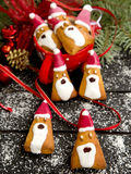 Santa Claus na massa Fotografia de Stock