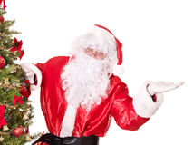 Santa claus near christmas tree pointing. Stock Photography