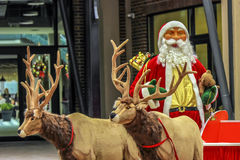 Santa Claus are near his reindeers. In harness Stock Photo
