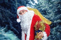 Santa claus . new yaer and christmas. Santa Claus in a snowy forest with a bag of presents and a stick in his hands royalty free stock photos