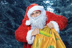 Santa claus . new yaer and christmas. Santa Claus in a snowy forest with a bag of presents and a stick in his hands stock photos