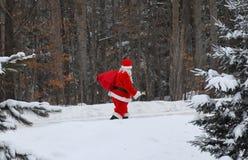 Santa Claus odprowadzenie w lesie Zdjęcia Royalty Free