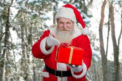 Santa Claus offering box with gift. Authentic Santa Claus pointing on red gift box while standing on winter nature background. Christmas time and presents Stock Photos