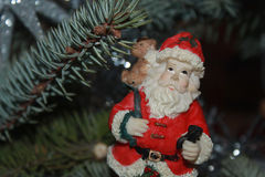 Santa Claus på granfilialbakgrund Arkivbilder