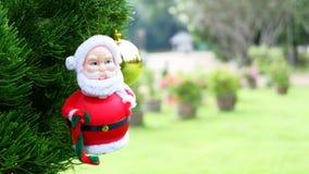 Santa Claus on pine tree,background christmas with santa claus stock photo