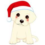 Santa Claus Puppy Images libres de droits