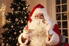 Santa Claus que guarda uma cookie, árvore de Natal no fundo imagens de stock