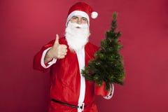 Santa Claus recommande le meilleur arbre de Noël images libres de droits