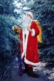 Santa Claus in a winter forest. Christmas and new year holiday. Santa Claus in a red fur coat worth in the winter woods stock images
