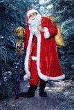 Santa Claus in a winter forest. Christmas and new year holiday. Santa Claus in a red fur coat worth in the winter woods. new year and christmas royalty free stock photography