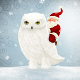 Santa Claus rides white owl Stock Images