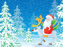 Santa Claus riding on the reindeer in the winter f Royalty Free Stock Photos