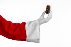 Santa Claus theme: Santa holding a fir cone in his hand on a white background Royalty Free Stock Images