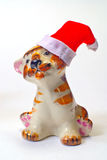 Santa Claus  tiger and  christmas hat Royalty Free Stock Images