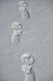 Santa claus trace on snow. White winter snow with footmark or trace on trail way on santa claus shoes at cold christmas or xmas and new year holiday outdoor Royalty Free Stock Images