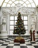 Santa Claus tradicional que colocaba el árbol de navidad cercano se vistió para arriba por una Feliz Año Nuevo y una Navidad fotos de archivo libres de regalías