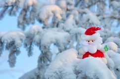 Santa Claus on the tree. Stock Photography