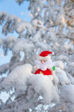 Santa Claus on the tree. Royalty Free Stock Photos
