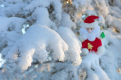 Santa Claus on the tree. Stock Images